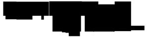 Salón – Peluquería Natividad Guzmán. Logo